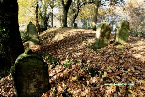 judenfriedhof2